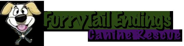 FurryTail Endings